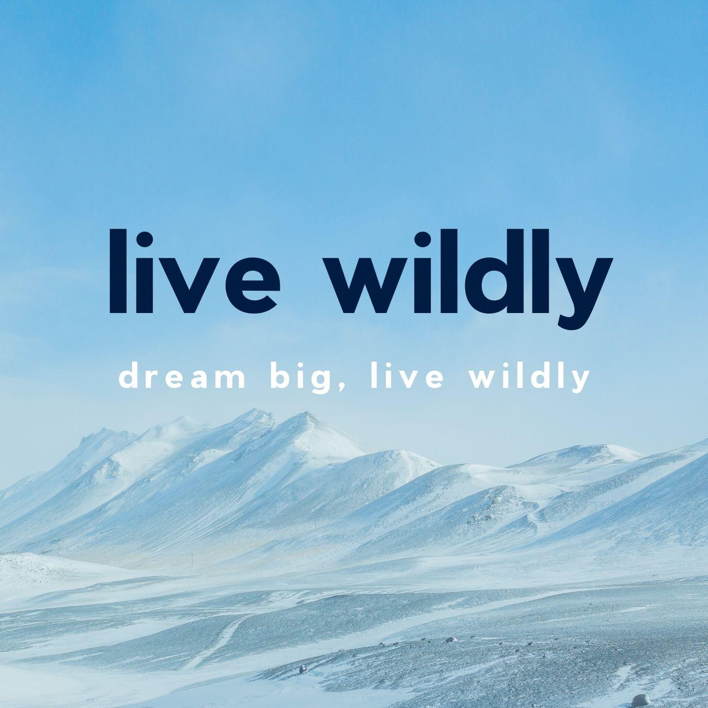 Artwork for podcast Live Wildly Podcast