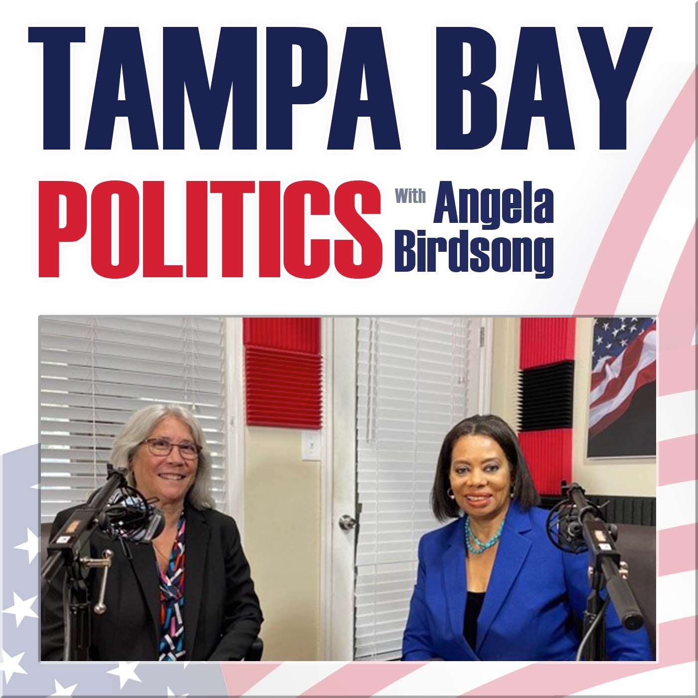 Artwork for podcast Tampa Bay Politics