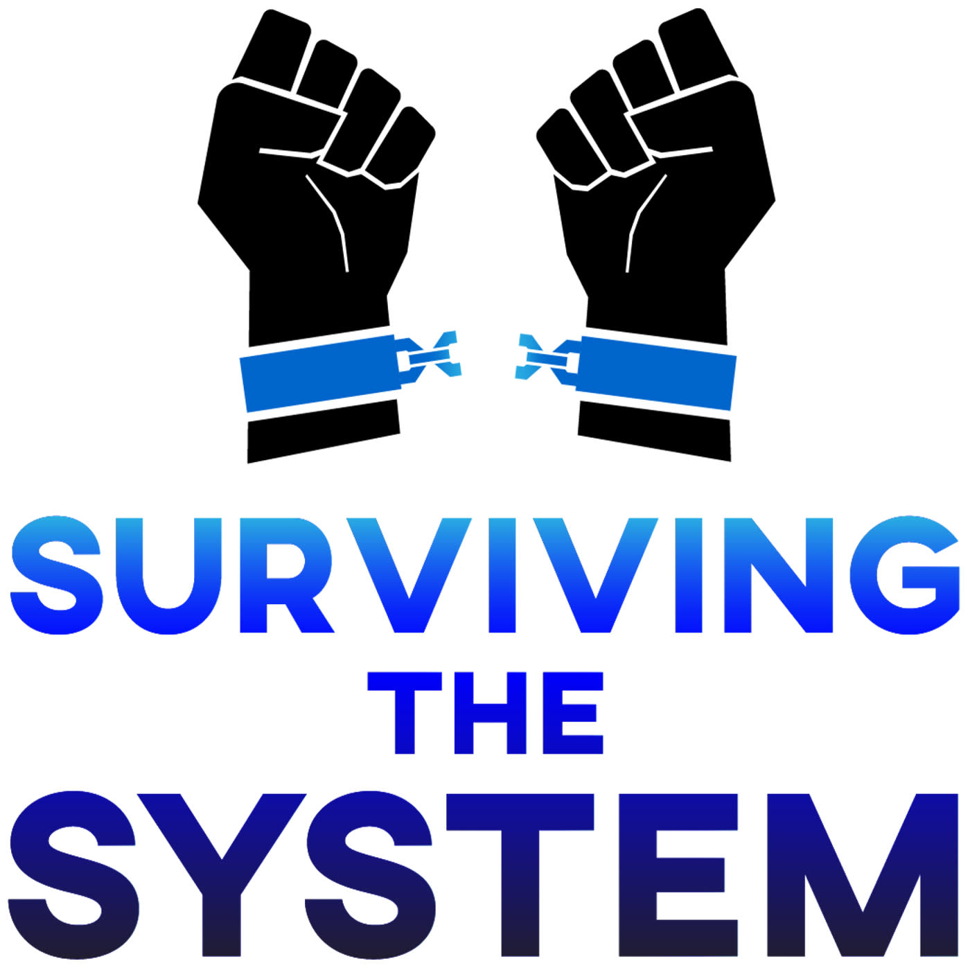 Artwork for podcast Surviving The System