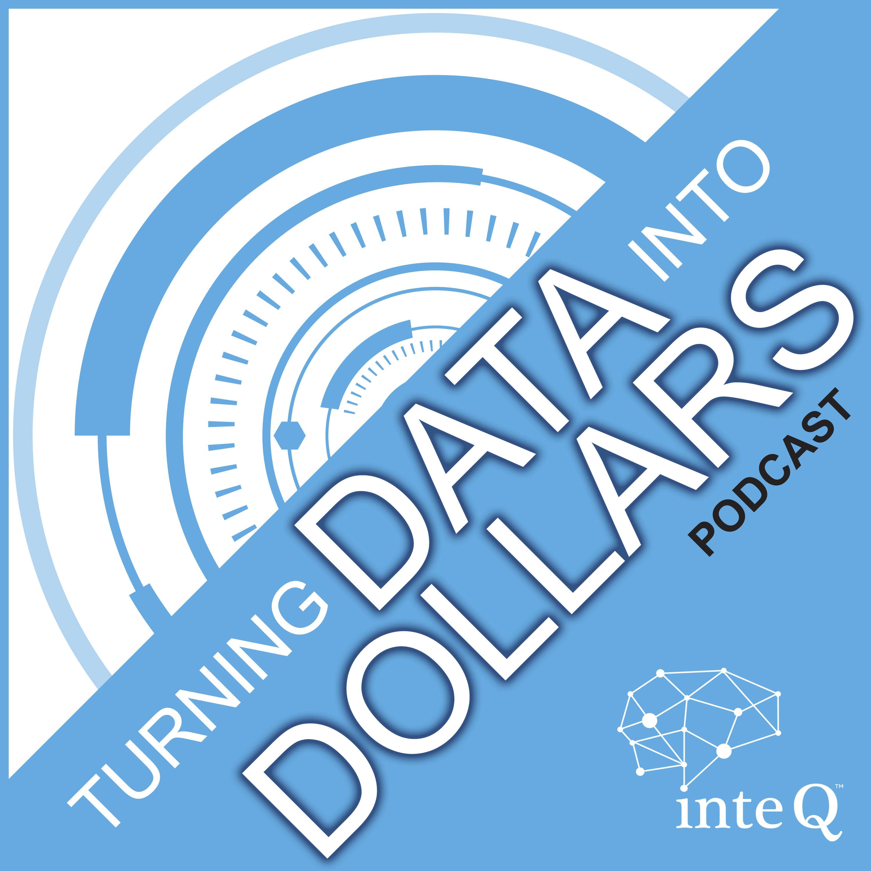 Artwork for podcast Turning Data into Dollars