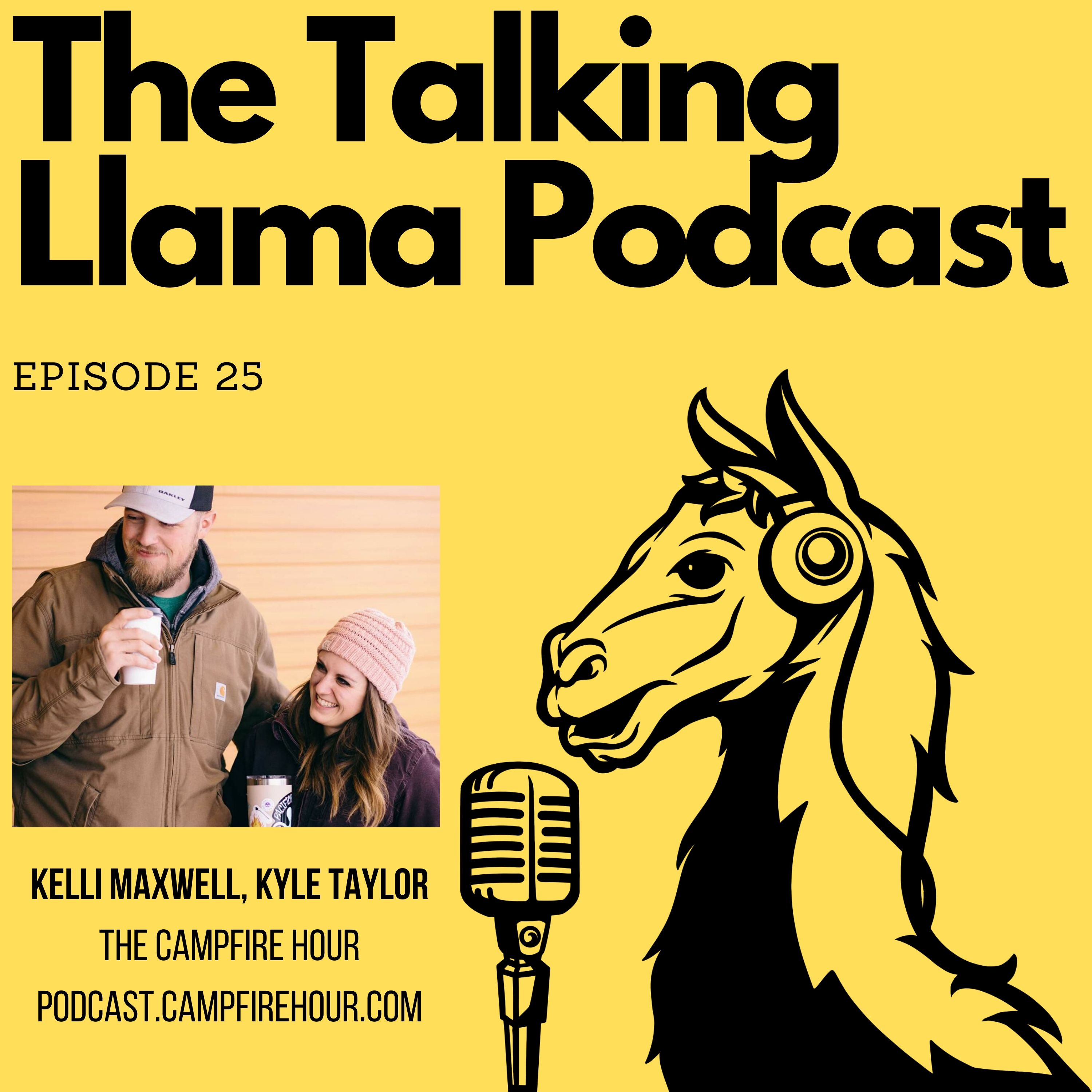 Artwork for podcast The Talking Llama Podcast