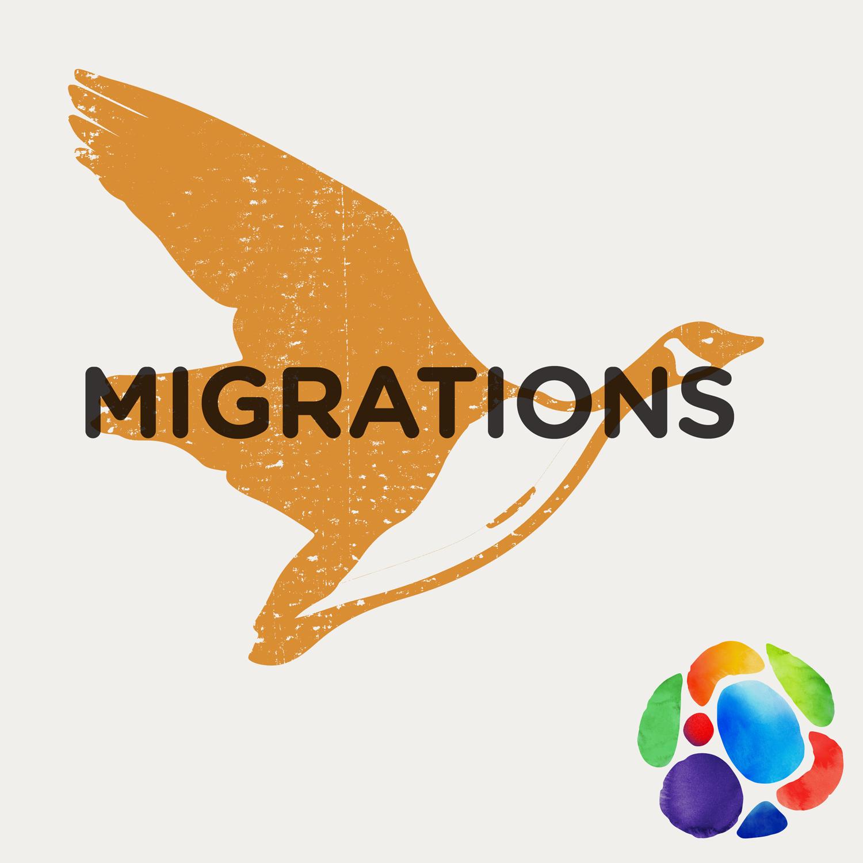 Artwork for podcast Migrations d'oiseaux
