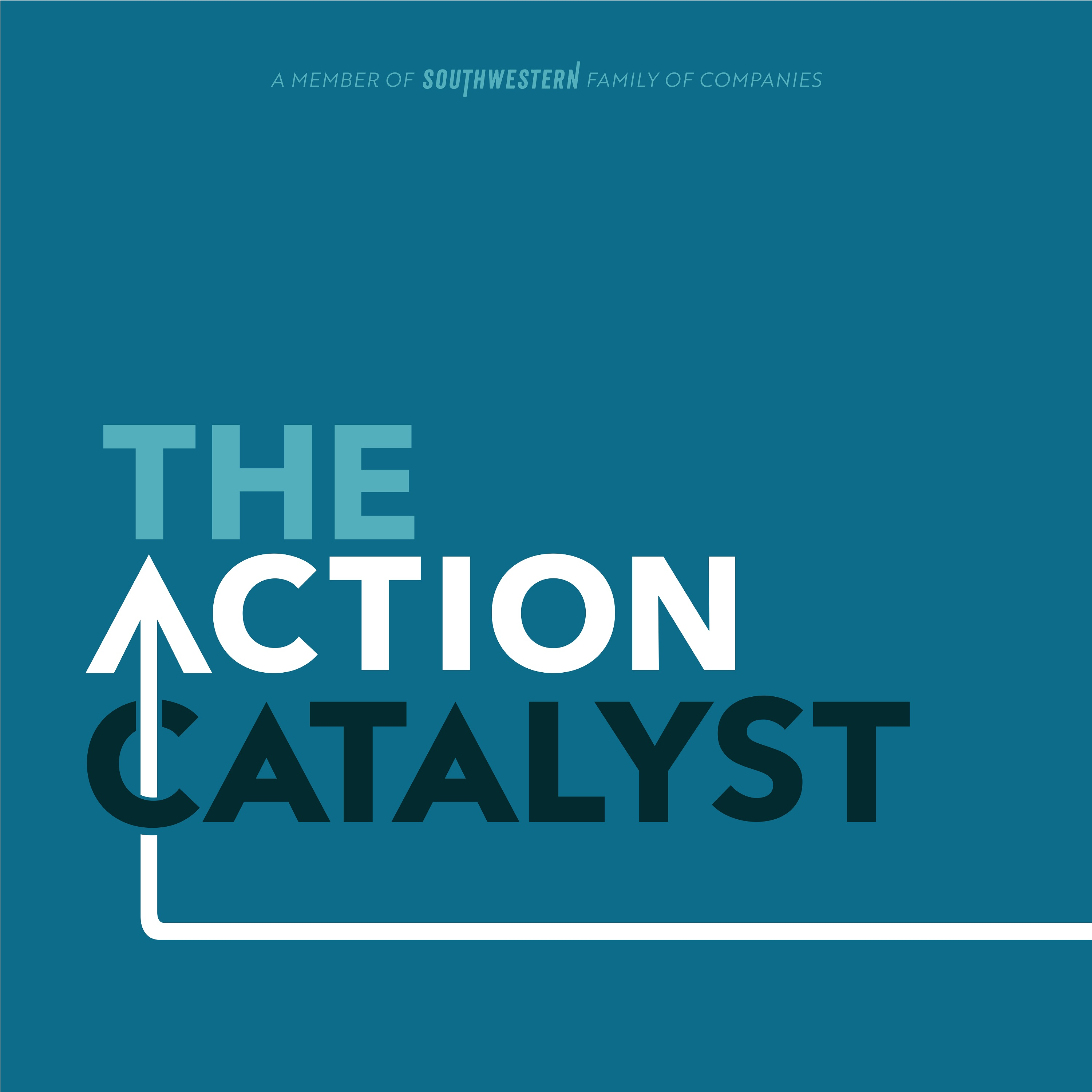 Artwork for podcast The Action Catalyst