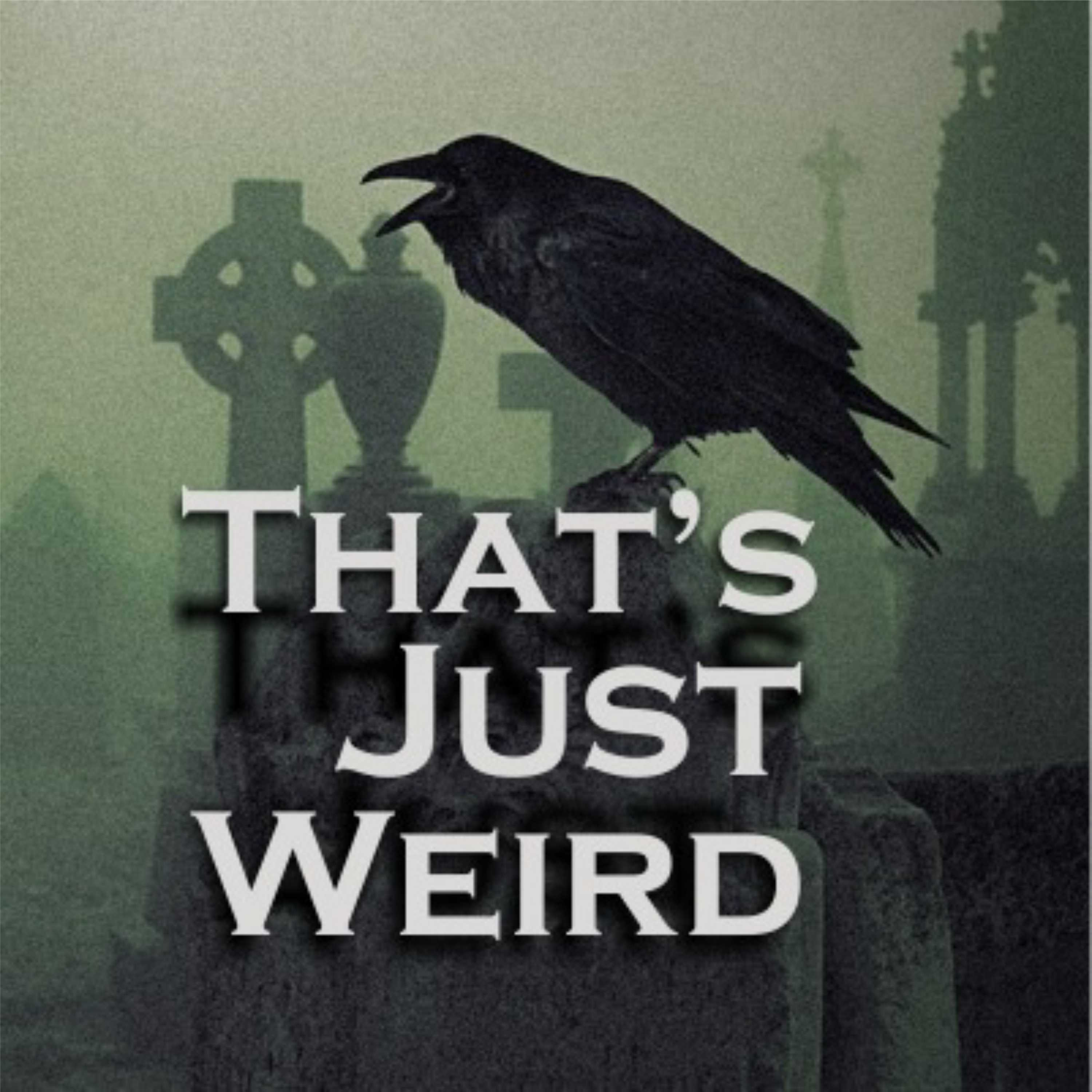 Show artwork for That's Just Weird