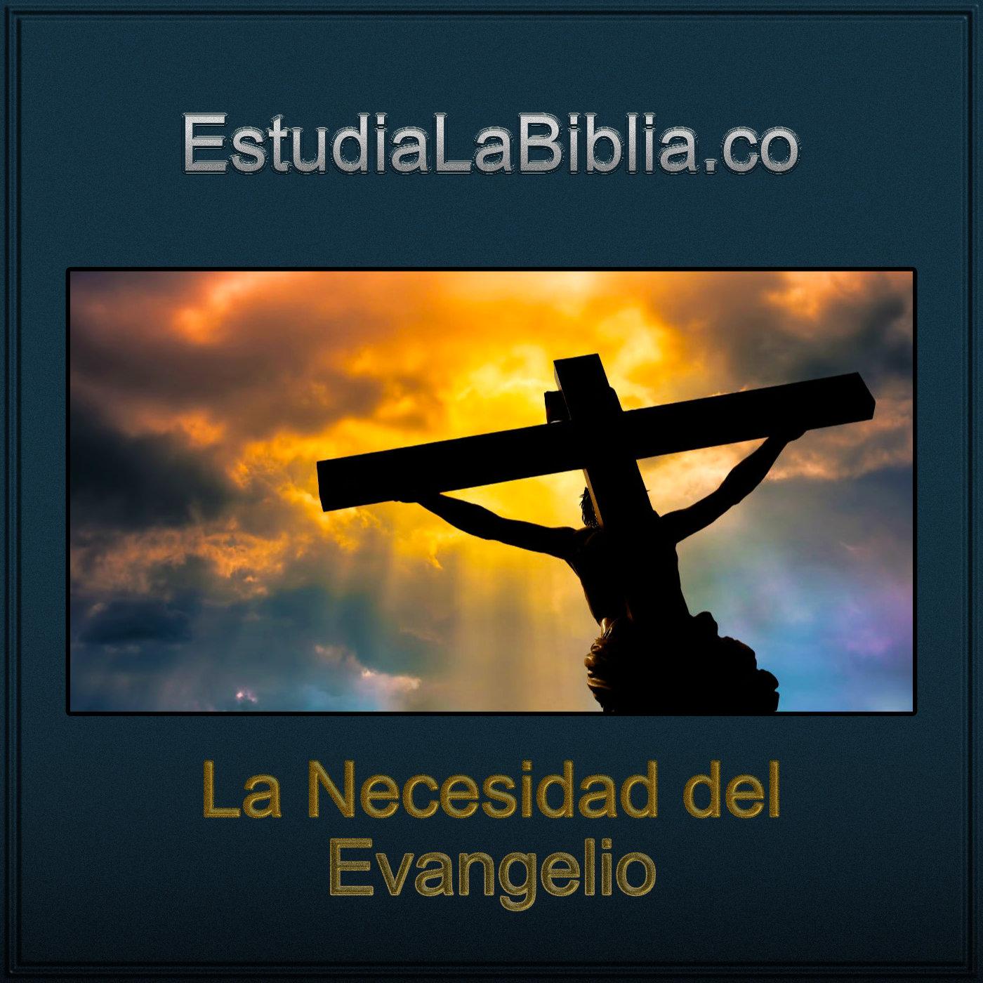 Artwork for podcast Estudia La Biblia Podcast