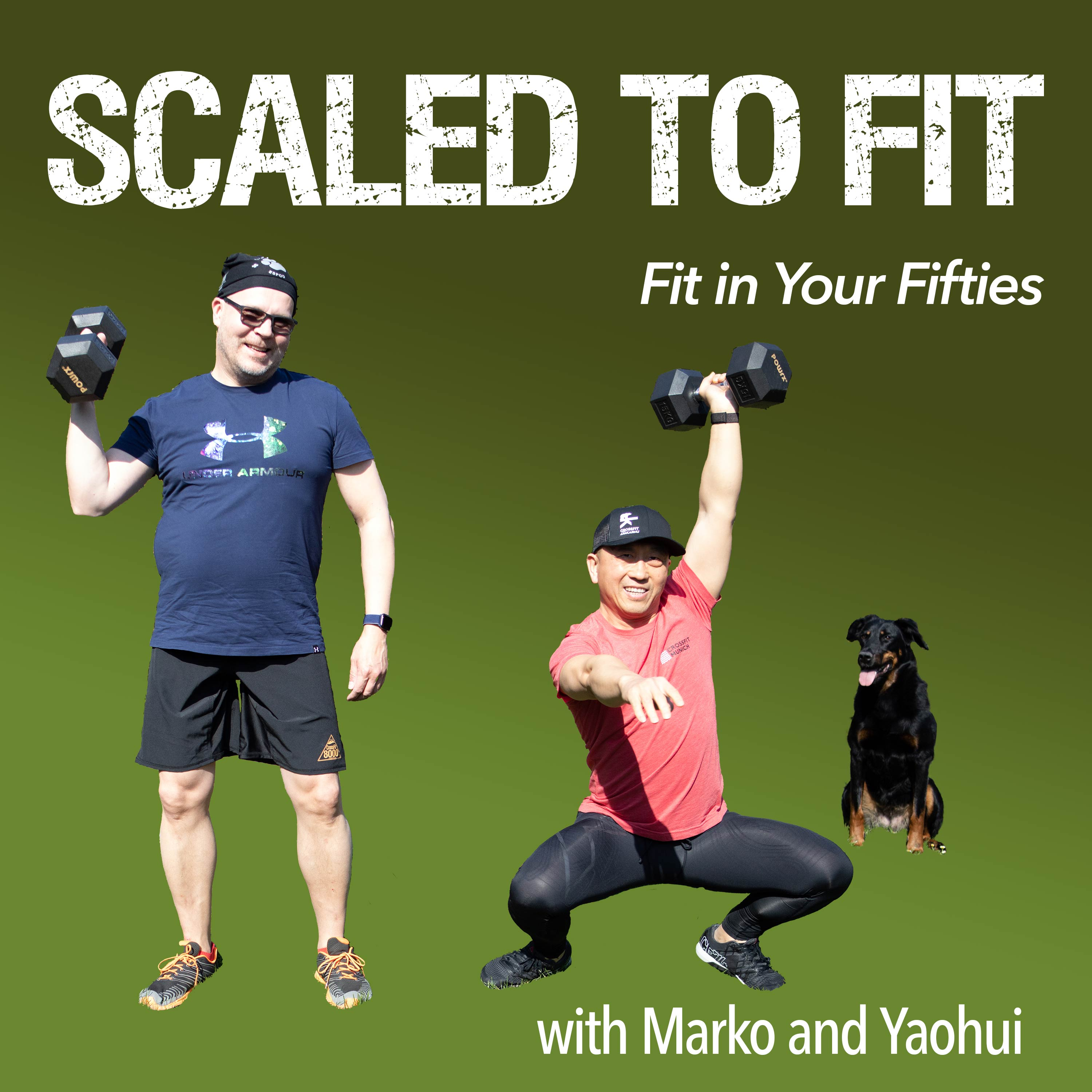 Show artwork for Scaled to Fit