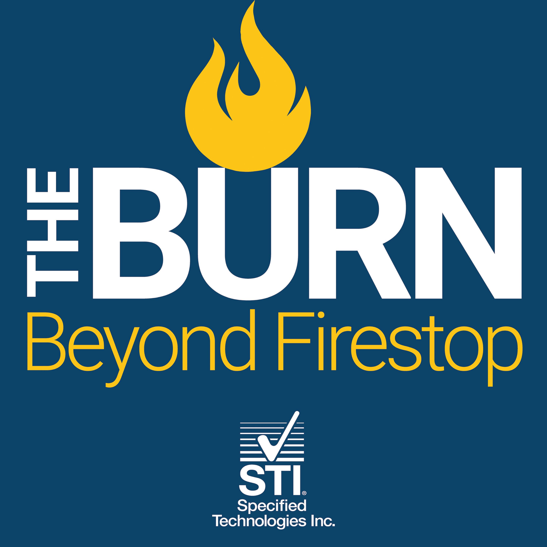 Artwork for podcast The Burn