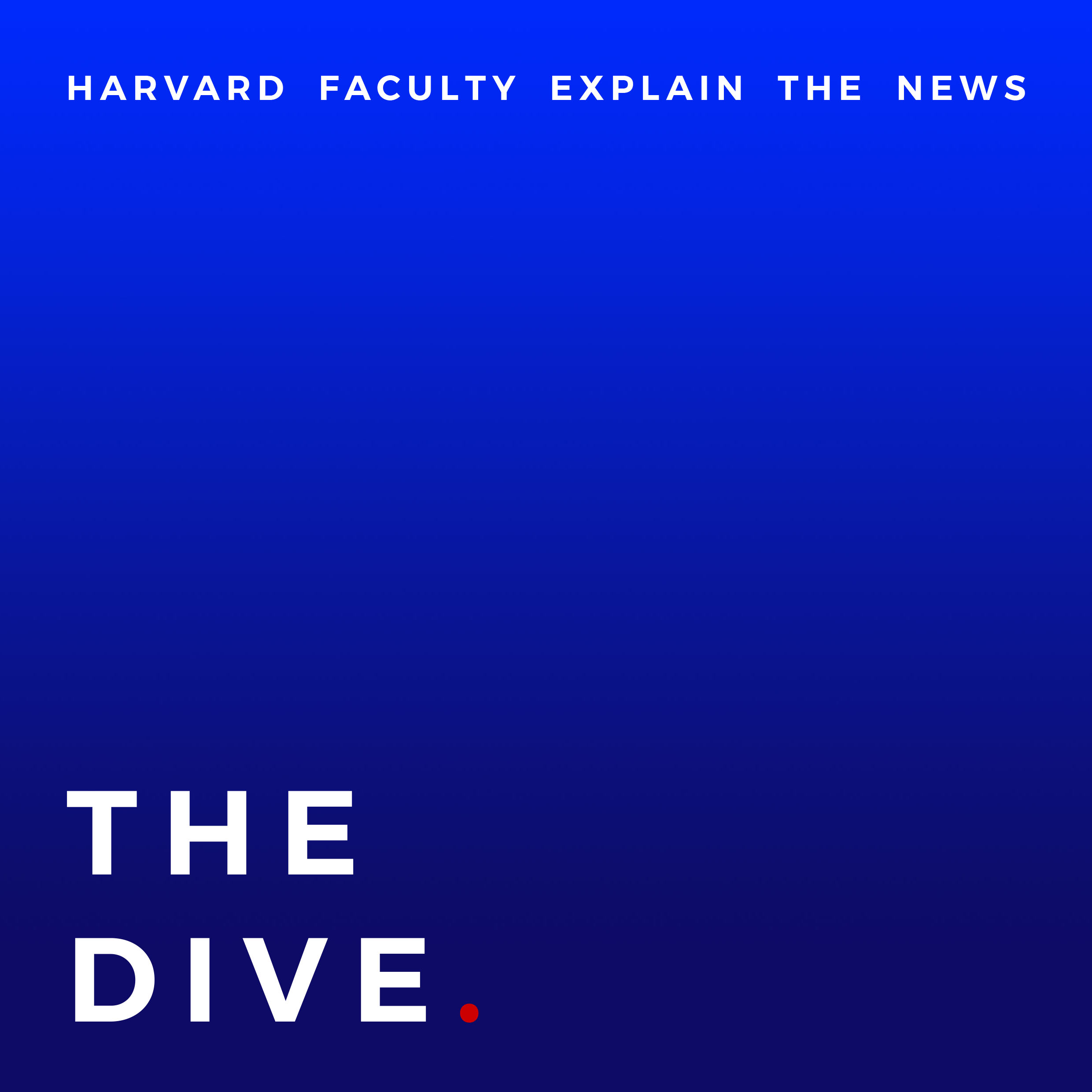 Show artwork for The Dive