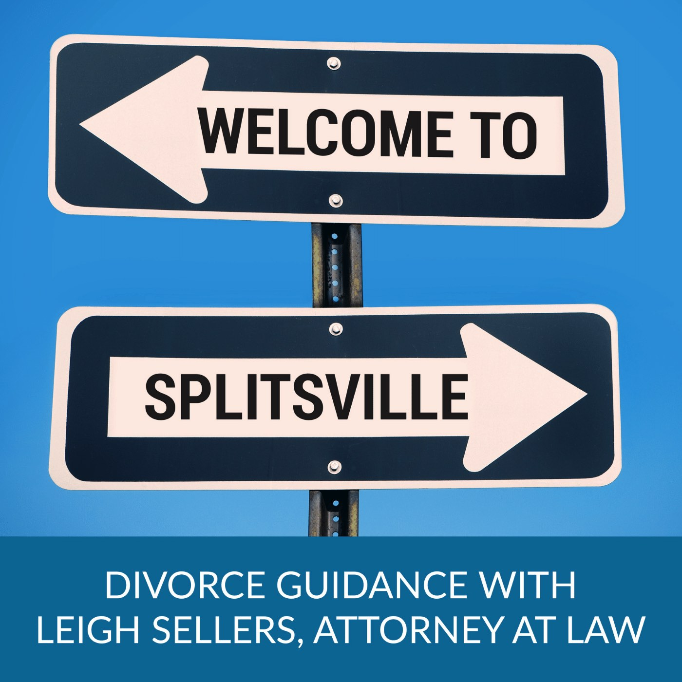 Welcome to Splitsville   Navigating Divorce in a Modern World