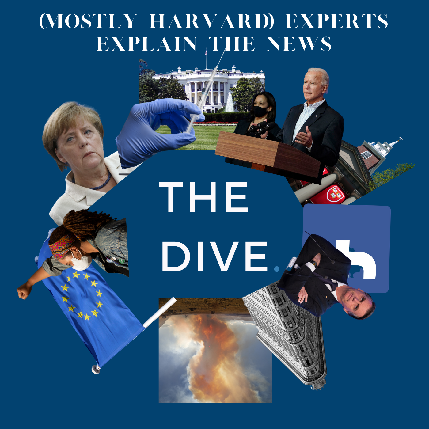 Show artwork for The Dive: Experts from Harvard and Beyond Explain The News