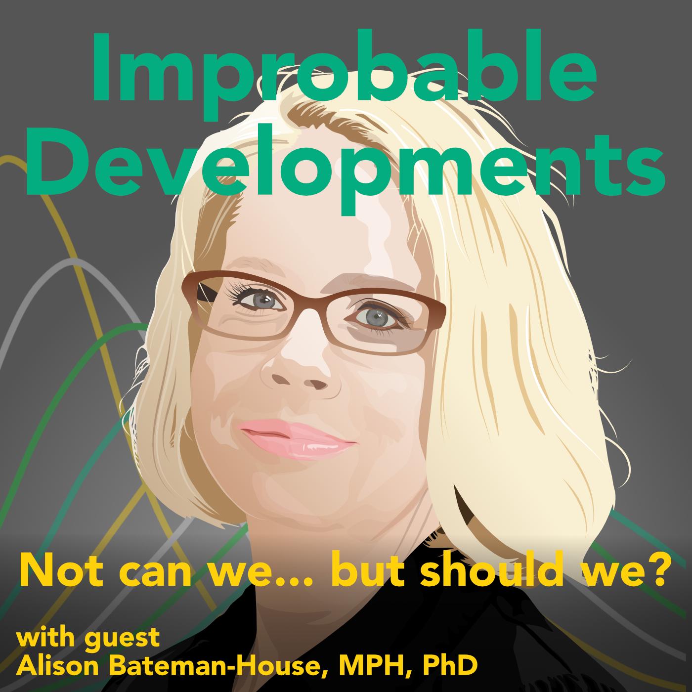Artwork for podcast Improbable Developments