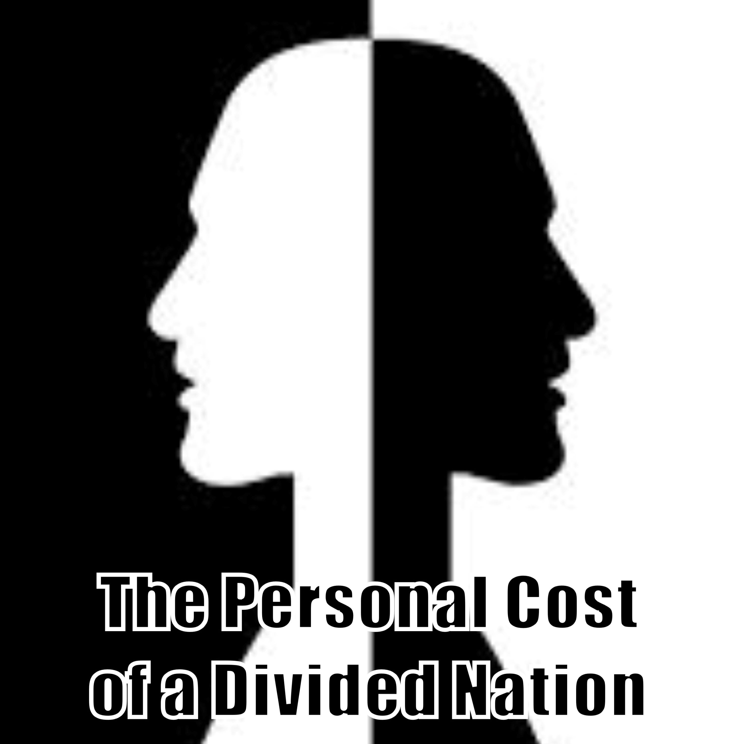 Show artwork for The Personal Cost of a Divided Nation