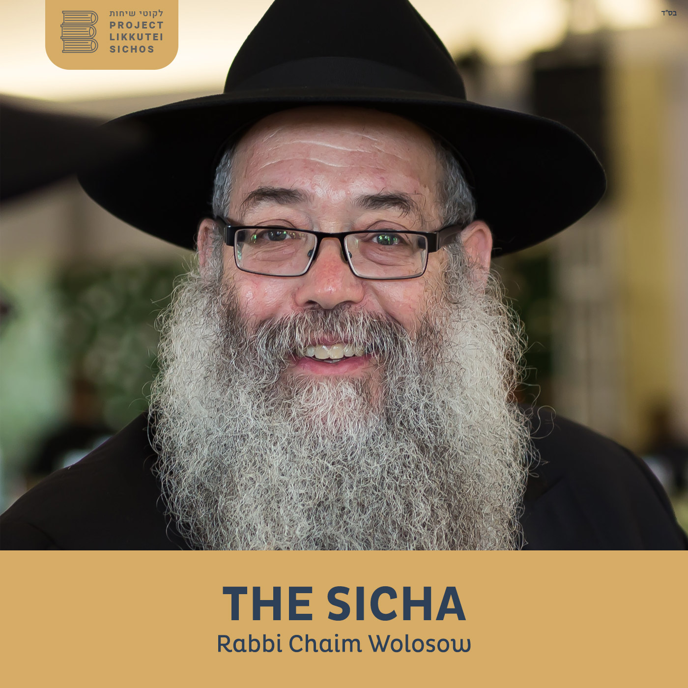 Artwork for podcast The Sicha, Rabbi Chaim Wolosow