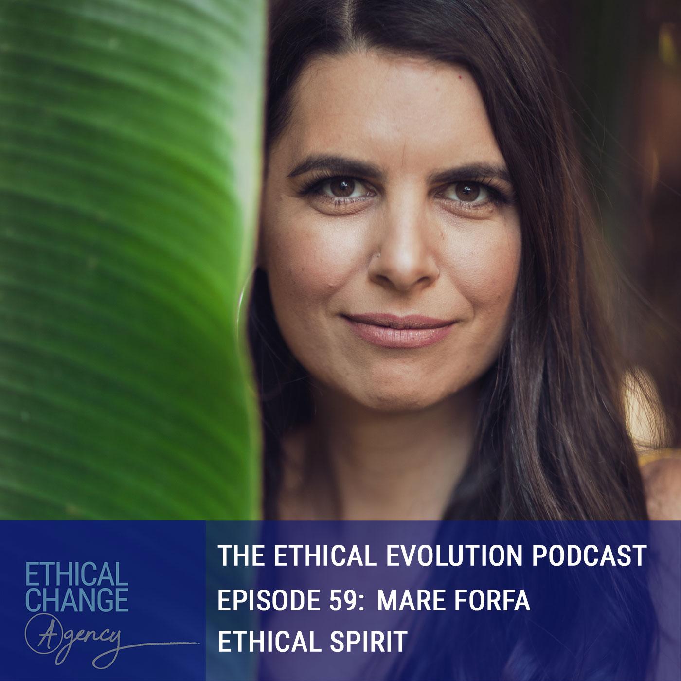 Artwork for podcast The Ethical Evolution Podcast